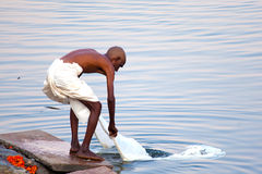 Ritual bathing. In the river Ganga Royalty Free Stock Images