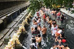 Ritual Bathing at Puru Tirtha Empul, Bali royalty free stock images