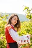 Ritual de la cosecha de Rose en pueblo búlgaro foto de archivo libre de regalías