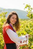 Ritual de la cosecha de Rose en pueblo búlgaro fotografía de archivo