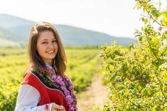 Ritual de la cosecha de Rose en pueblo búlgaro imagen de archivo libre de regalías