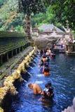 Ritual que baña la ceremonia, Bali Indonesia Fotografía de archivo