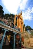 Rituales 1 de Thaipusam Imagen de archivo
