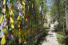 Rituals and religion. A sacred place of Buddhists in eastern Siberia. Colored Buddhist tags hang on the tree with prayer. Prayers and wishes on colored ribbons Royalty Free Stock Photography