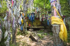Rituals and religion. A sacred place of Buddhists in eastern Siberia. Colored Buddhist tags hang on the tree with prayer. Prayers and wishes on colored ribbons Stock Photo
