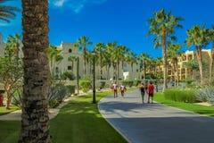 RIU Santa Fe Hotel på Cabo San Lucas, Mexico Arkivfoto
