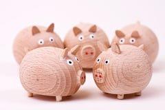 Riunione dei maiali Immagine Stock