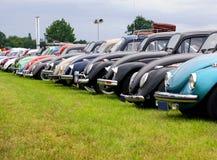 Riunione dello scarabeo di VW Fotografia Stock Libera da Diritti