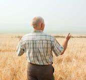 Riuscito agricoltore. retrovisione Immagini Stock