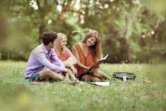 Riuscito gruppo di studenti con i taccuini al parco con un libro e una chitarra Fotografie Stock Libere da Diritti