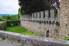 Riva城堡 Ponte dell'Olio 伊米莉亚罗马甘 意大利 免版税库存照片