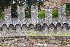 Riva城堡 Ponte dell'Olio 伊米莉亚罗马甘 意大利 库存照片