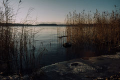 Riva congelata del lago Immagine Stock