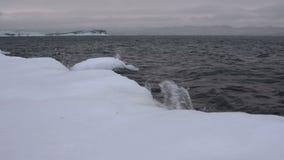 Riva congelata del lago Baikal archivi video