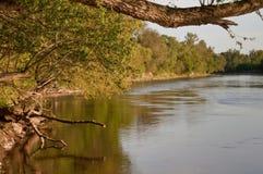 Riva del fiume Immagini Stock Libere da Diritti