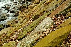Riva del fiume di Becva fotografie stock