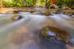 Riva del fiume di Congkak Fotografie Stock