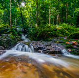 Riva del fiume di Tekala Fotografia Stock