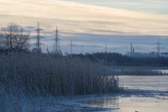 Riva del lago congelata con erba a lamella coperta dalla brina Fotografie Stock Libere da Diritti