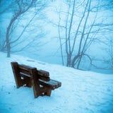 Riva del lago in inverno Fotografia Stock
