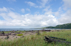 Riva del lago superiore Fotografie Stock Libere da Diritti