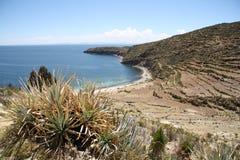 Riva del lago Titicaca ad Isla del Sol Fotografia Stock
