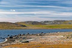 Riva del sud di Novaya Zemlya Fotografia Stock