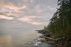 Riva dell'isola della primavera del sale, BC Fotografia Stock Libera da Diritti