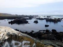 Riva dell'oceano immagini stock libere da diritti