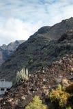 Riva dell'Oceano Atlantico in Tenerife ad ovest, Spagna immagine stock libera da diritti