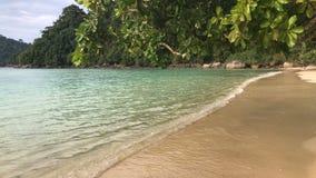 Riva dell'oceano su Koh Surin Island, Tailandia stock footage