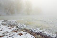 Riva di Snowy del lago nella nebbia Fotografia Stock