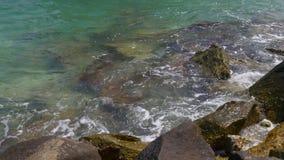 Riva 4k S.U.A. dell'acqua pulita del passaggio del golfo dell'oceano della luce di Miami di giorno di estate stock footage