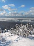 Riva nell'inverno, Lituania dello sputo di Curonian Immagini Stock Libere da Diritti