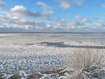 Riva nell'inverno, Lituania dello sputo di Curonian Immagine Stock