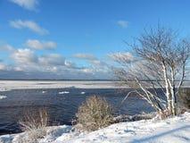 Riva nell'inverno, Lituania dello sputo di Curonian Immagine Stock Libera da Diritti
