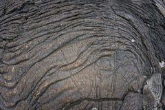 Riva nera hawaiana della lava Fotografie Stock Libere da Diritti