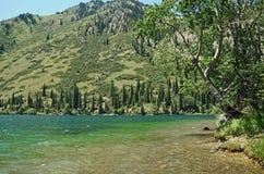 Riva orientale del lago Kolsay Fotografia Stock