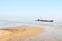 Riva surreale del lago Immagini Stock