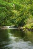 Riva verde fertile sbalorditiva con il fiume che scorre lentamente dopo la caloria immagini stock