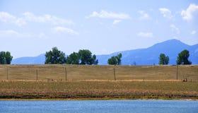 Rivage, arbres et montagnes lointains de lac Photos libres de droits