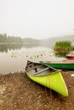 Rivage argenté de lac Images stock