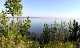 Rivage boisé du lac Photo stock