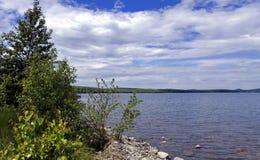 Rivage boisé du lac Image stock