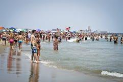 Rivage chaud du Jersey de jour Images stock