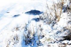 Rivage congelé de lac pendant le matin Images libres de droits