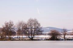 Rivage congelé de rivière Photographie stock libre de droits