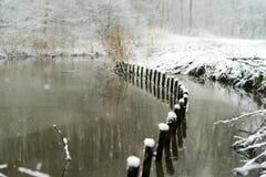 Rivage couvert par neige à une forêt Photographie stock libre de droits