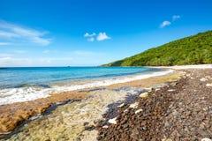 Rivage Culebra Puerto Rico de bord de la mer de plage de flamenco photos libres de droits