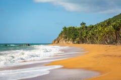Rivage Culebra Puerto Rico de bord de la mer de plage de flamenco images stock